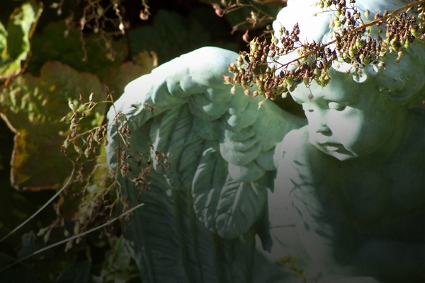 Is It Reasonable to Believe in Angelic Beings?