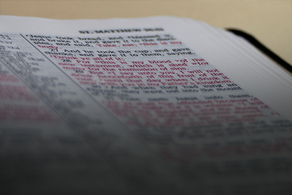The Case for the Reliability of the New Testament (Free Bible Insert)