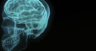 Are Atheists Correct When They Claim Mental States Are Merely Brain States