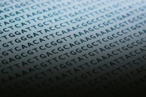 Why the Information in Our DNA Points to the Existence of God