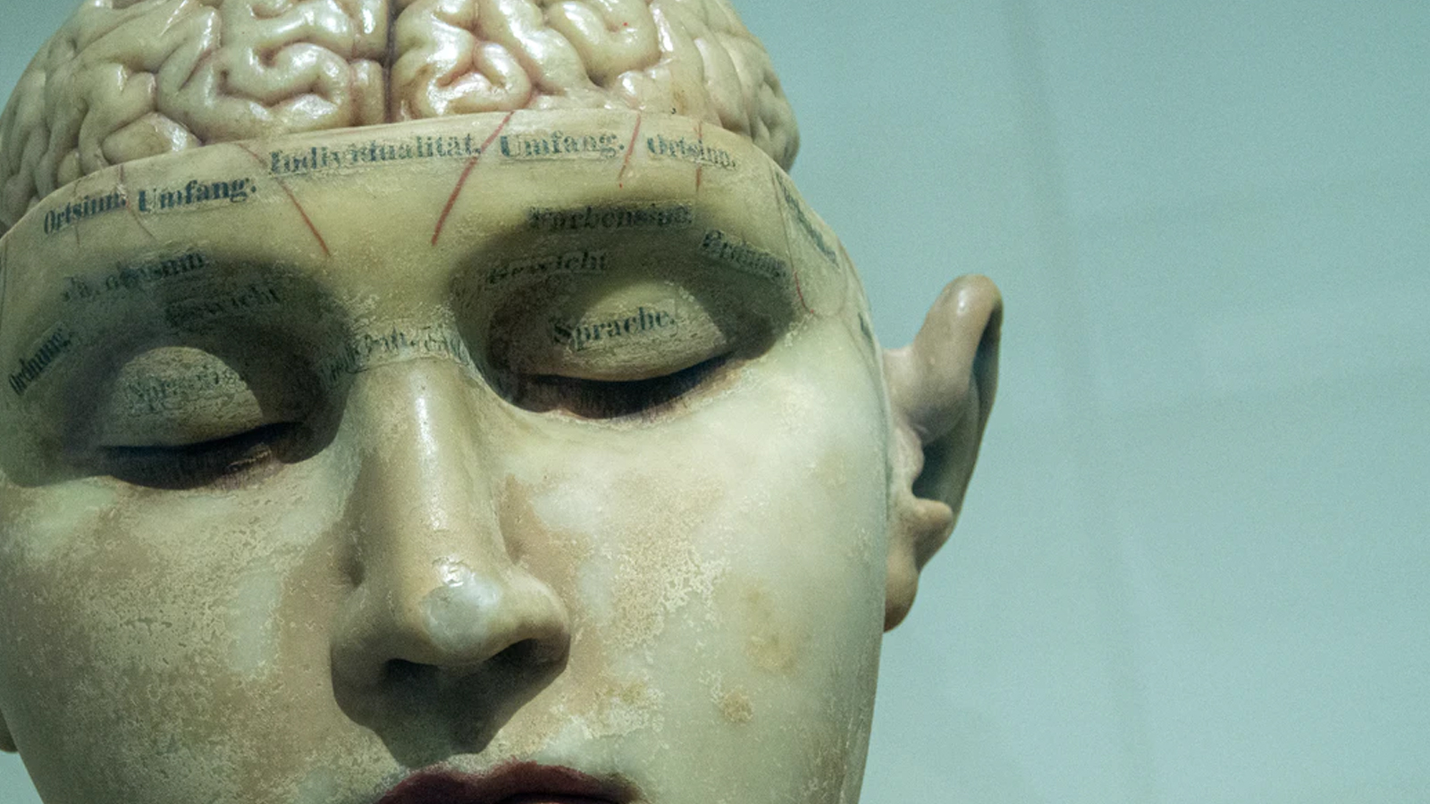 Why We Know the Mind is Something OTHER Than the Brain - The Case for the Soul Part 2